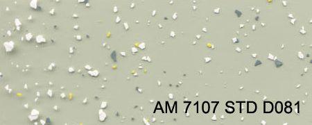 am-7107-std-d081