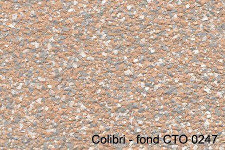 colibri - fond CTO 0247
