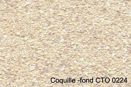 coquille -fond CTO 0224