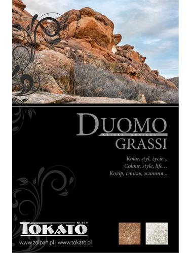 Wzornik Dekoracji Duomo Grassi
